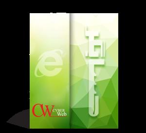 نرم افزار حسابداری و مالی تحت وب